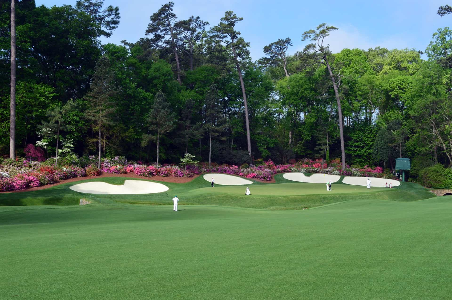 Photograph of hole 13, Azalea, at tThe Masters in Augusta with four bunkers and a line of azaleas behind them.